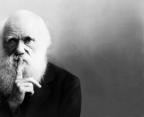 [ENC004] El hombre adelanta a Darwin
