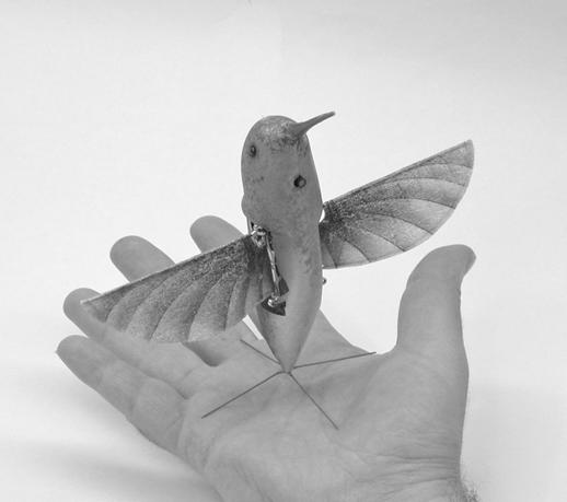 [ENC055] El colibrí espía del Pentágono