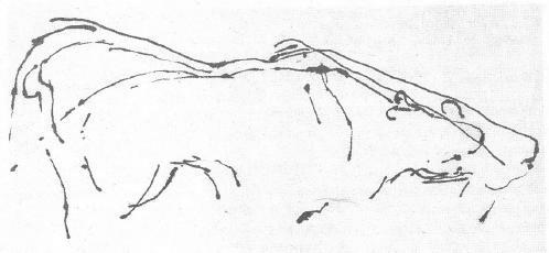 [ENC079] Sobre dibujos que encogen